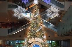 マークイズみなとみらいにクリスマスツリーや館内外各所にイルミネーション登場!