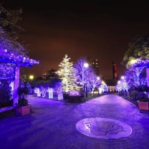 2020年 横浜・アメリカ山公園のイルミネーションはブルーで演出!えむえむさんも輝く