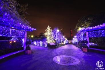 2020年 横浜・アメリカ山公園のイルミネーションはブルーの光で演出!えむえむさんもキラキラ