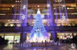 2020年横浜ランドマークプラザのクリスマスツリー点灯!1日4回ライトアップショー