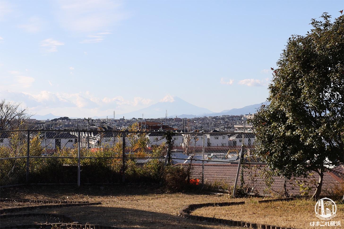 三殿台遺跡から見た富士山