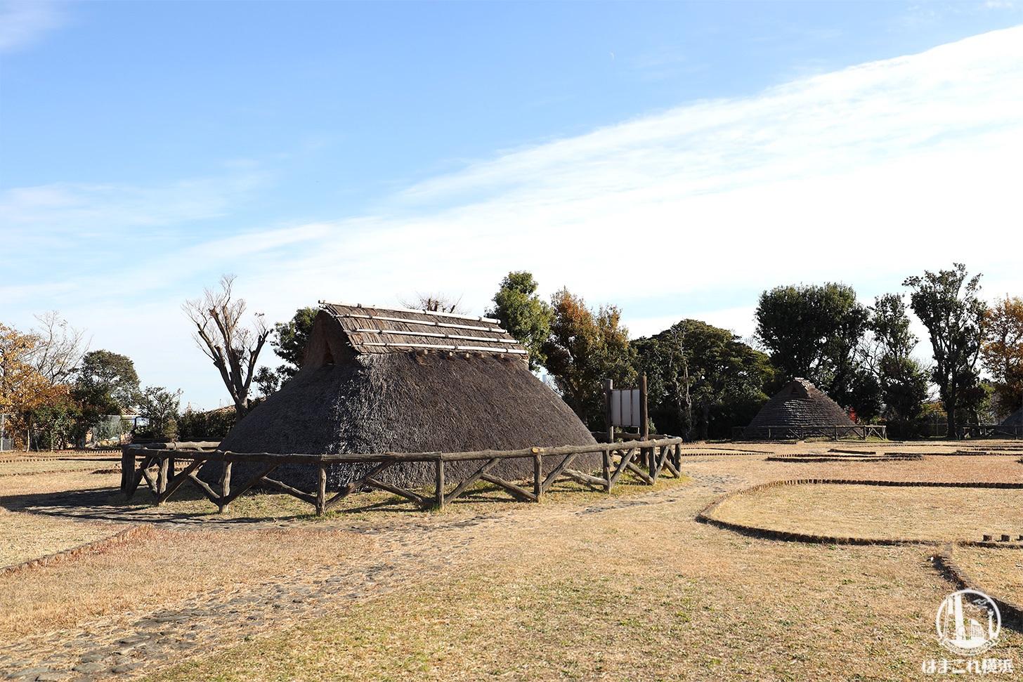 横浜三殿台遺跡で歴史探訪!丘にある縄文・弥生・古墳時代のムラ跡