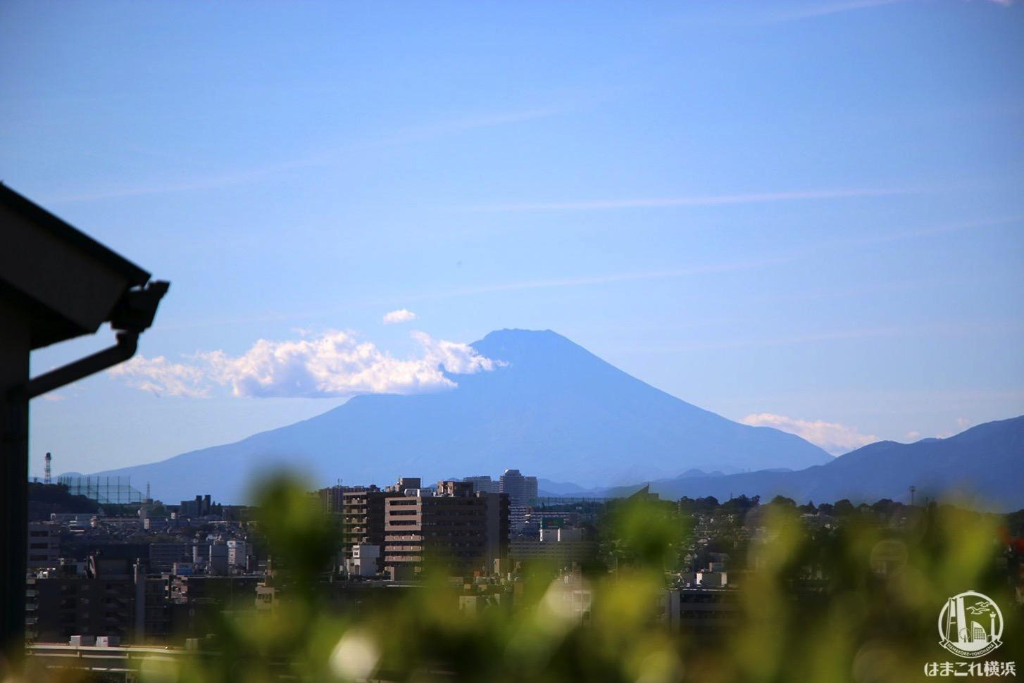 山手イタリア山庭園から見た富士山