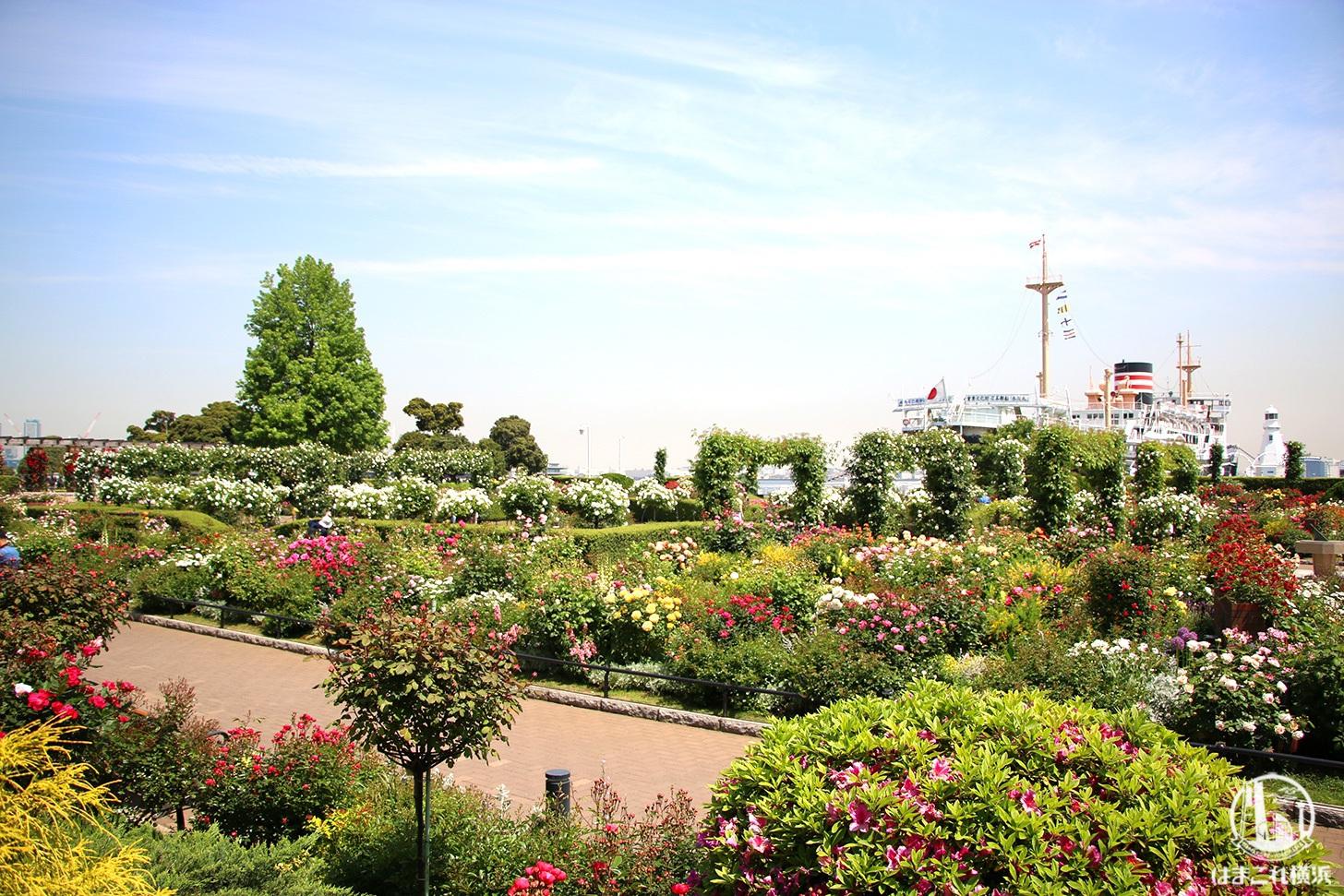 ガーデンネックレス横浜2021、みなとエリアと里山ガーデンで開催!