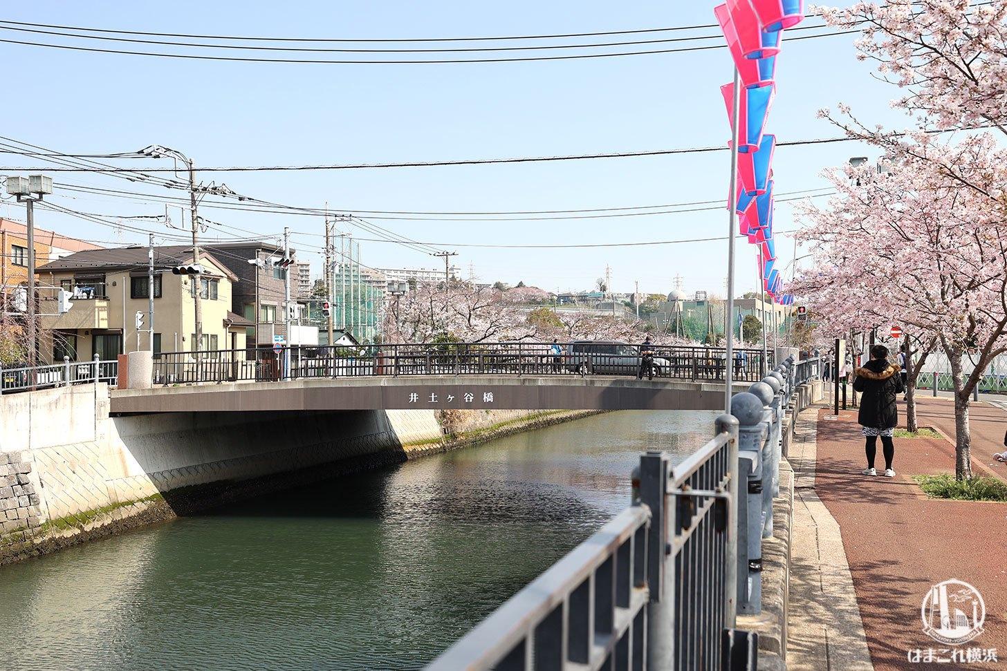 井土ヶ谷橋