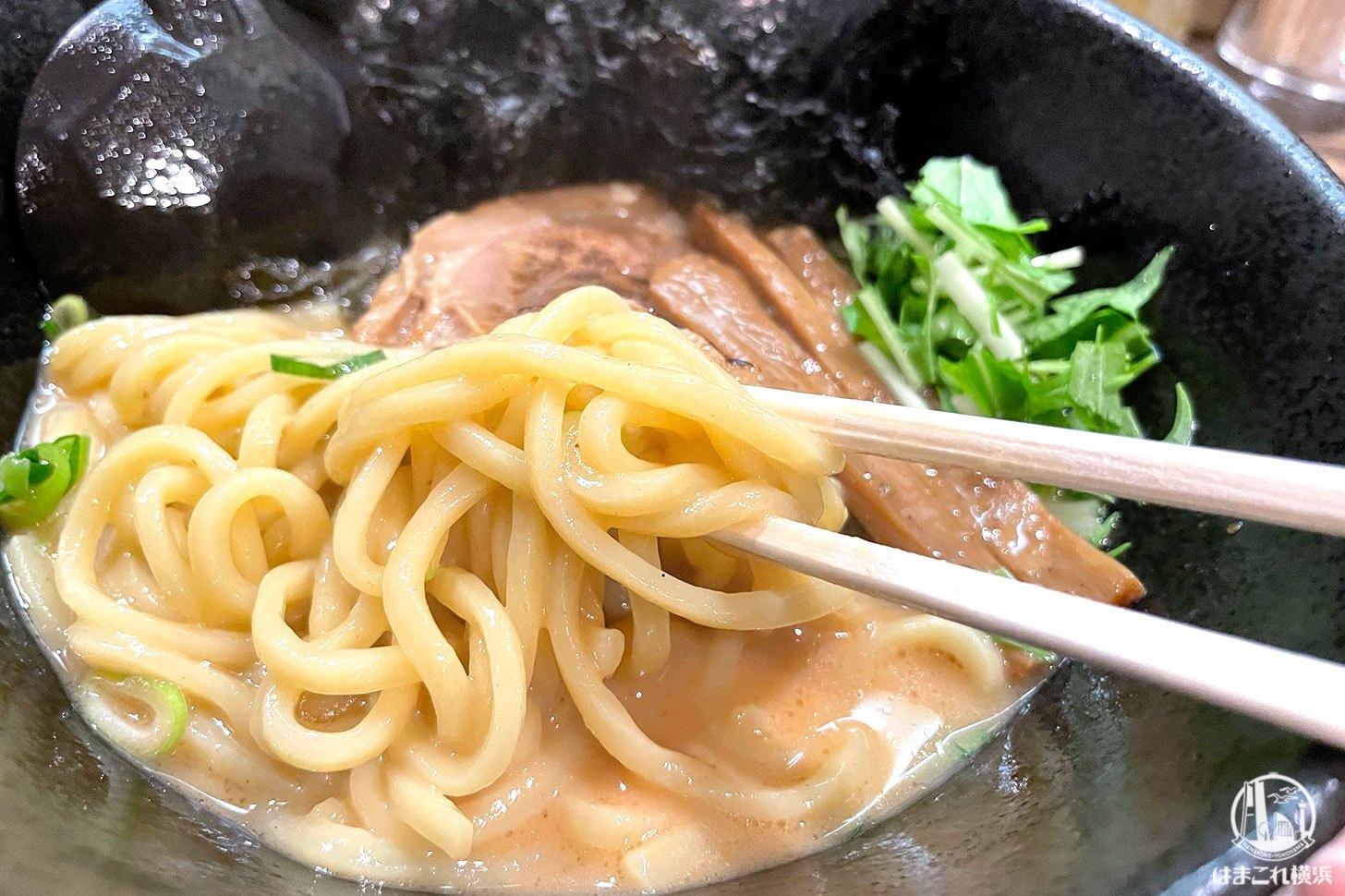 豚骨かつおラーメン 太麺
