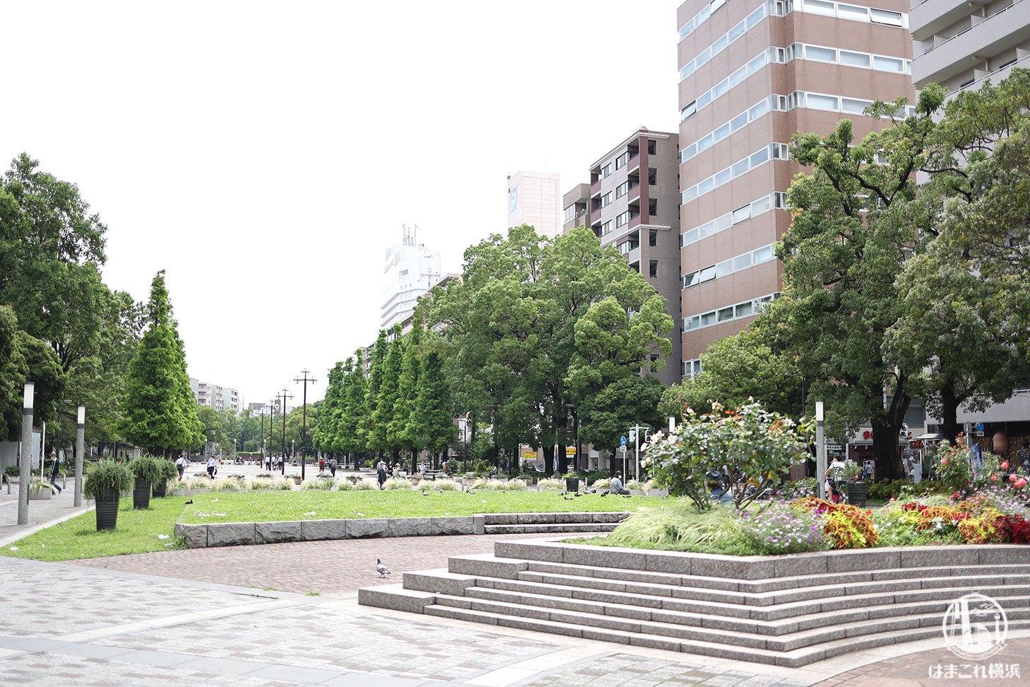 大通公園横浜の約1.2キロ散歩!石の広場や水の広場、自然も結構豊かなスポット