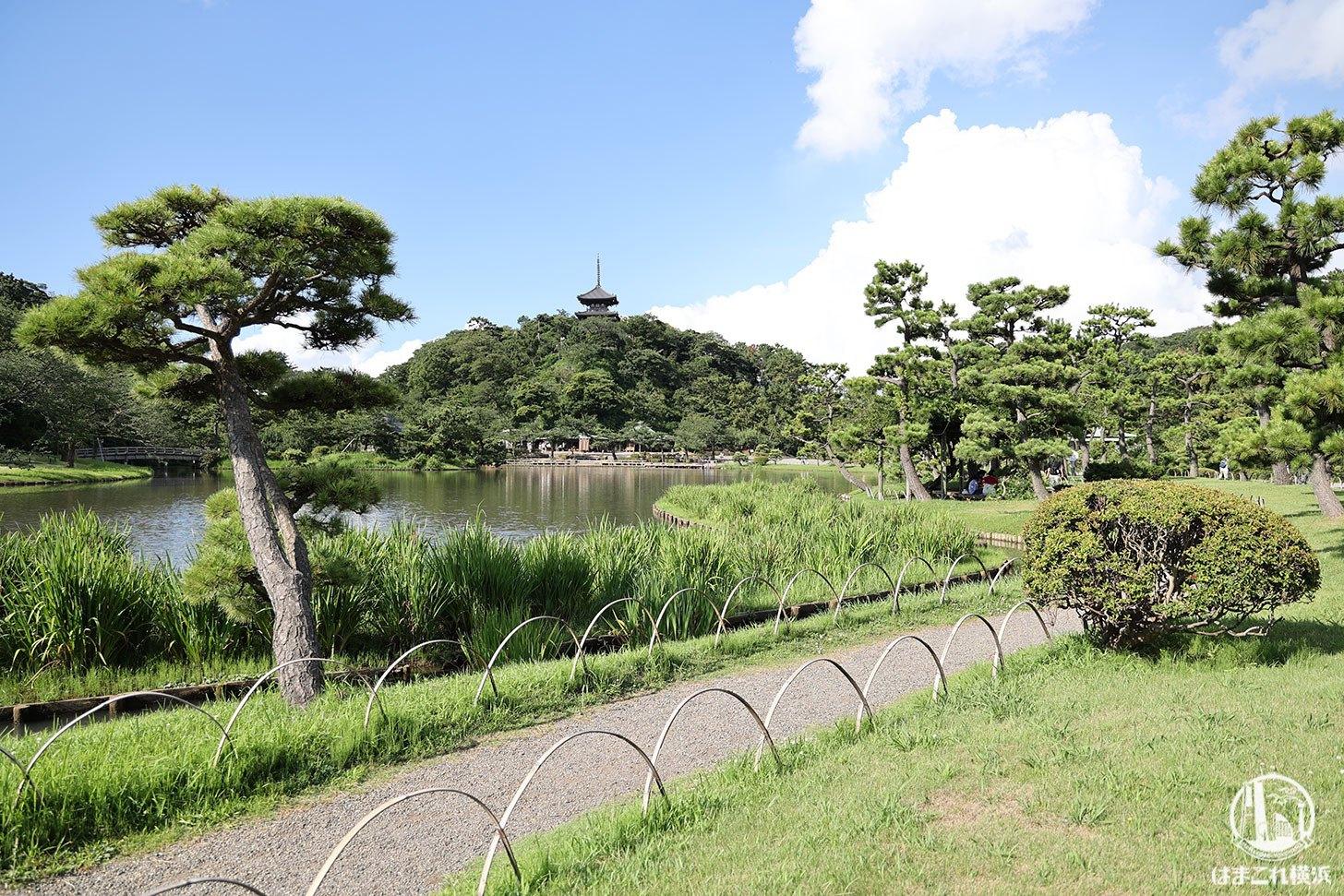 三溪園の景色