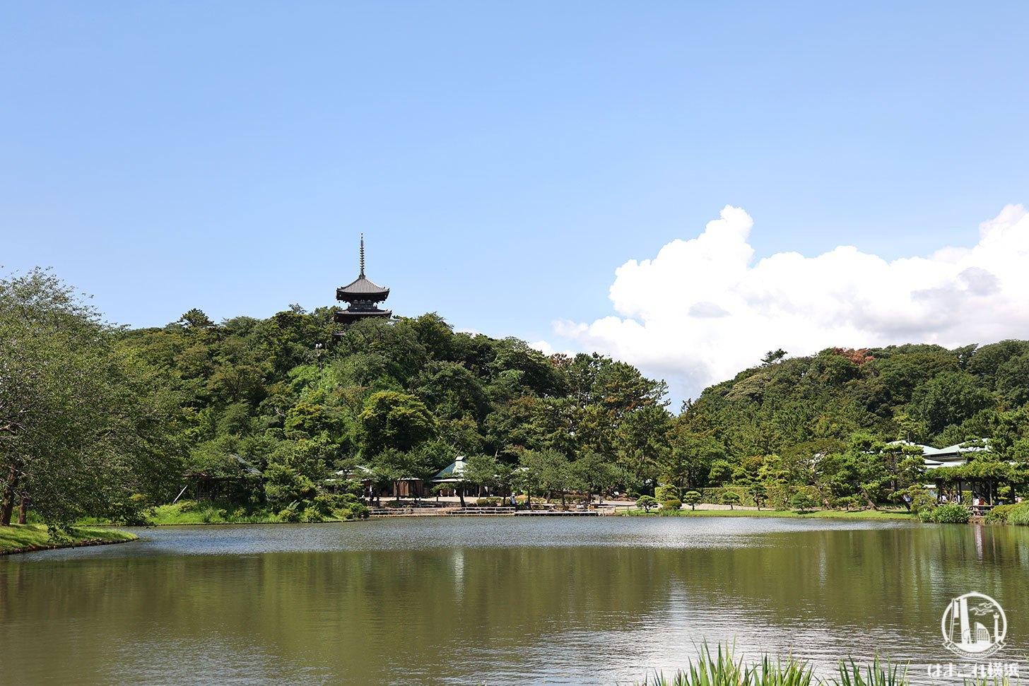 三溪園 全風景