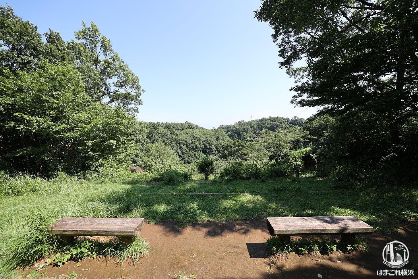 舞岡公園 丘の上