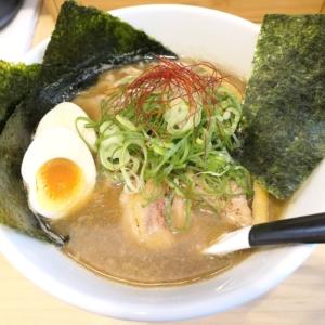 麺屋M 横浜・阪東橋の「特製煮干そば」自家製手もみ麺が旨く香り豊かな一品!