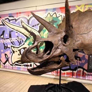 Gr8!こぶりな恐竜展