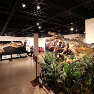 """横浜赤レンガ倉庫の""""恐竜展""""はこぶりなのに内容濃すぎ!アートとコラボで親近感も"""